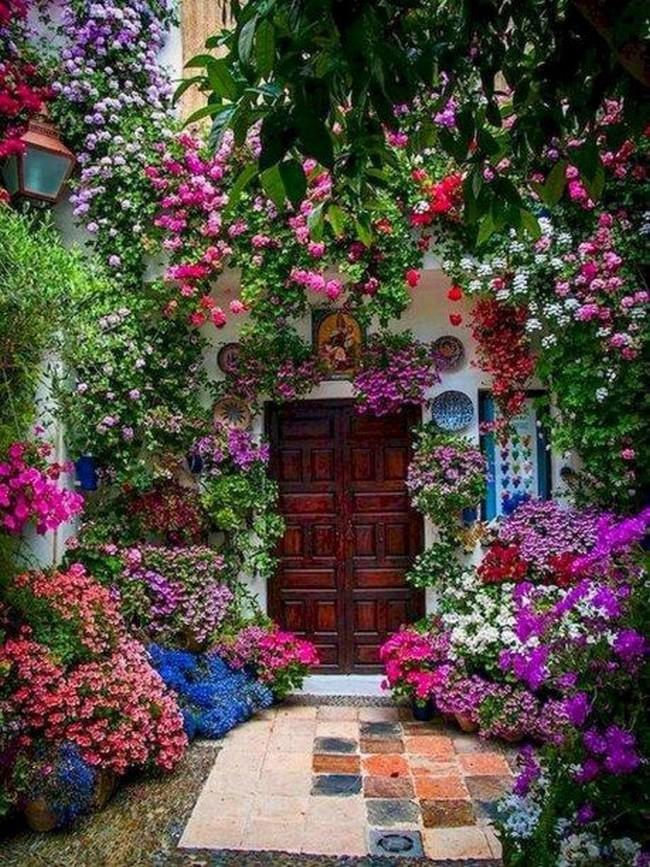 дизайн двора перед входом в дом