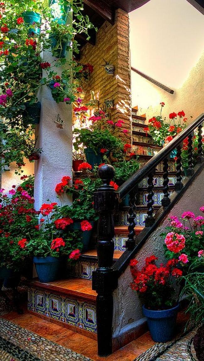 лестница вход в дом дизайн