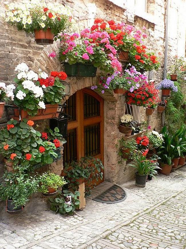 оформление входа в дом в ландшафтном дизайне