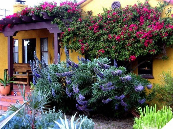 цветочное украшение двора