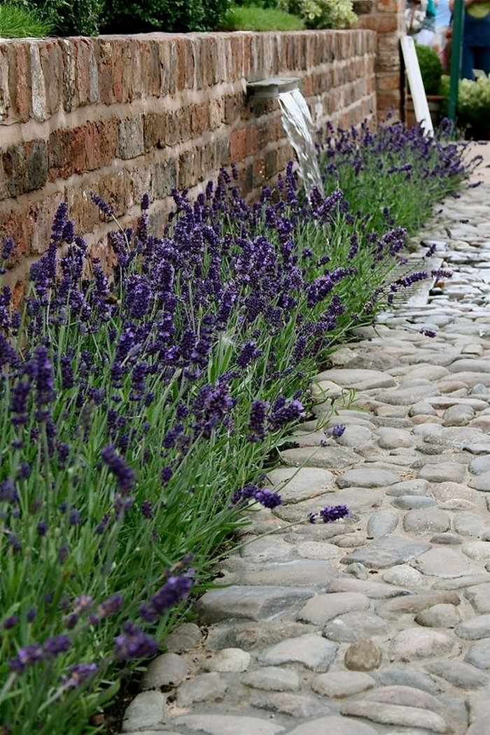 как вымостить двор частного дома