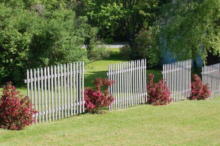 защита от взглядов соседей по даче