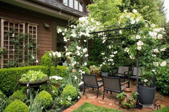 цветочный дачный двор