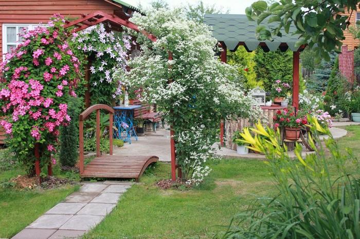 дизайн дачного двора