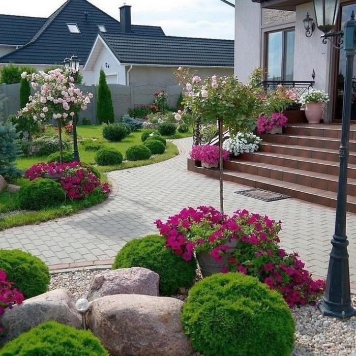 ландшафт дачного двора