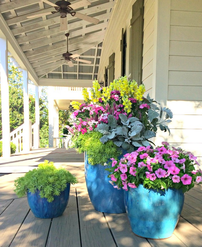 цветы в уличных вазонах