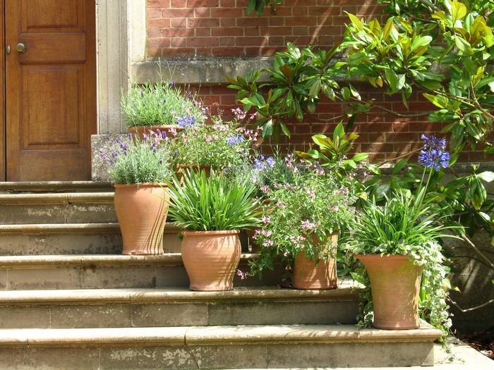 украшение двора уличными вазонами