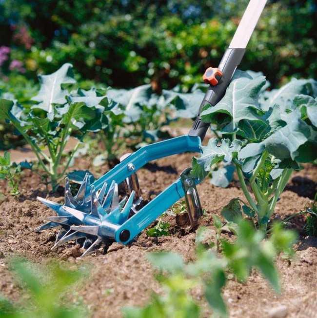 огородные идеи дачников