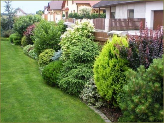 садовые композиции на даче