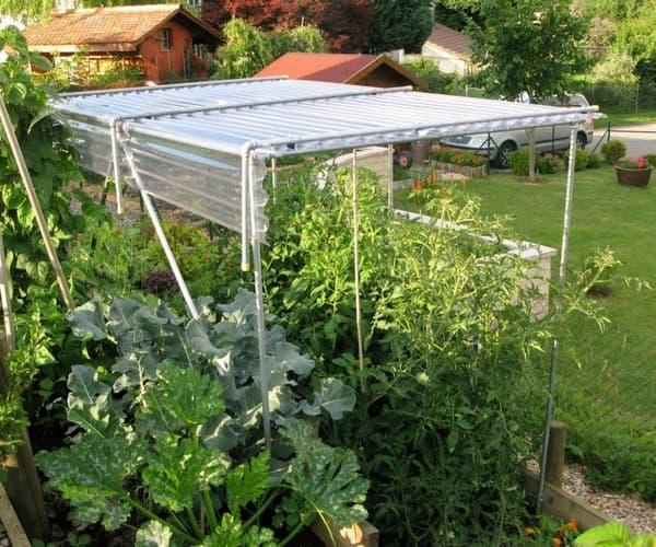 защита огорода от палящего солнца