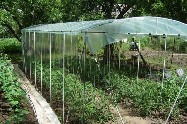 затеняющая сетка от солнца на огороде