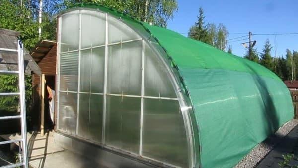 защита растений от солнца