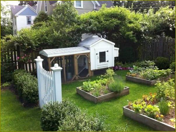 Огородный домик