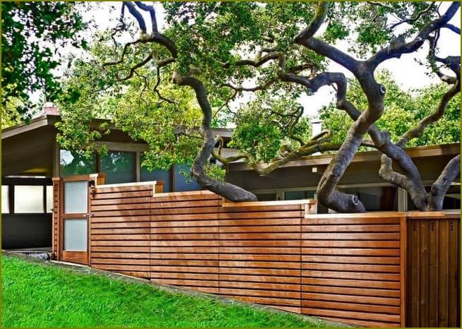 деревянный забор для частного дома